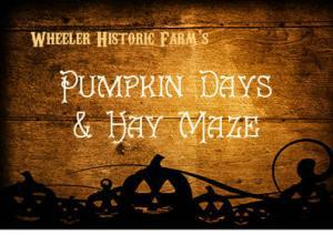 non scary halloween fun for the little ones kids can find their way through a hay bale maze pick a pumpkin from the pumpkin patch and take a wagon ride - Wheeler Farm Halloween